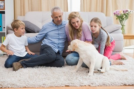 TrueSteamLLC Carpet Cleaning Richmond VA