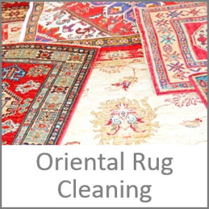 True_Steam_LLC_Banner_small_Oriental_Rug_Cleaning_01