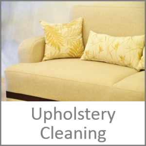 True_Steam_LLC_Banner_small_Upholstery_Cleaning_01